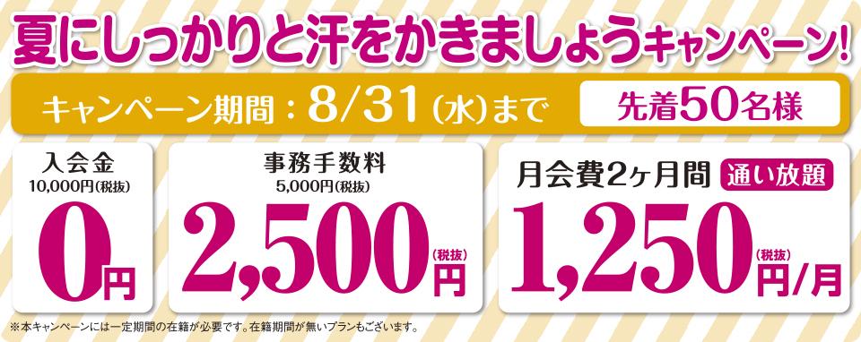 honatsugi_cam0831