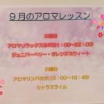 20-09-02-12-04-02-433_deco