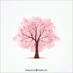 cherry-blossoms-05