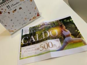 カルド 500円